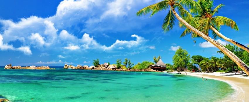 Coconut-Tree-Beach-HD-Wallpaper-1024x640-850x350